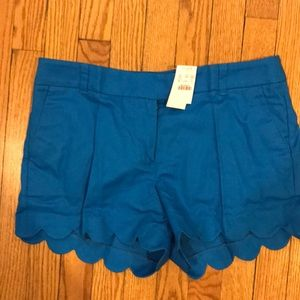J. crew teal blue scallop shorts